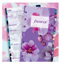 1 Woche / 2 Seiten Illustrated Diary Pack Personal