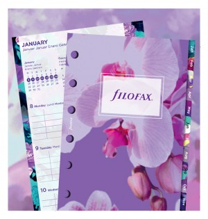 1 Woche / 2 Seiten Illustrated Diary Pack - Pocket
